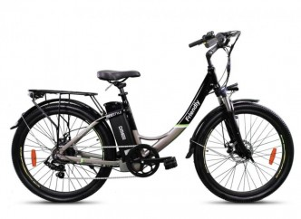 E-bike Friendy 3.1 250W 10.4AH Disco