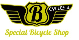 Bcycles.it Custom & Special Bikes