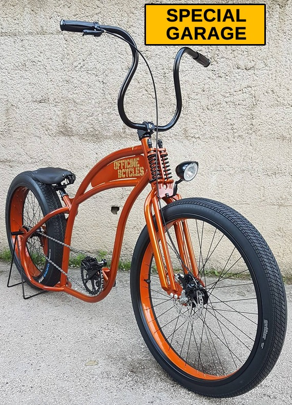 biciclette special custom bikes